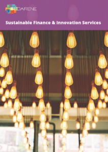 Sustainable Finance & Innovation Services