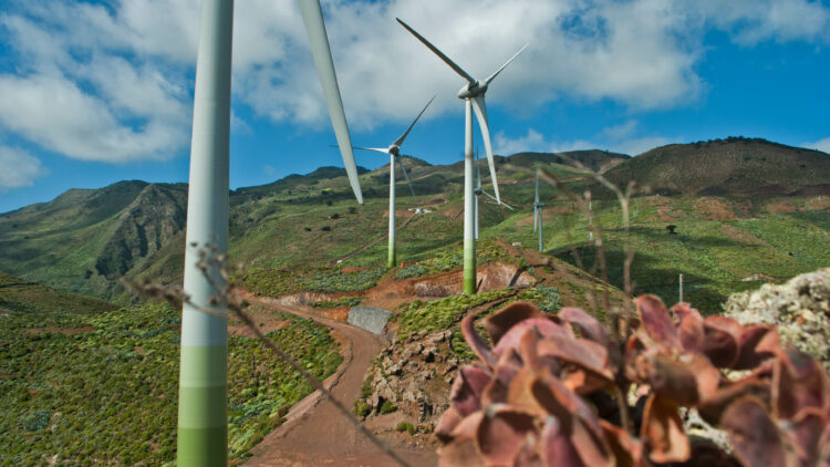 Wind-pumped-hydro Power Station of El Hierro